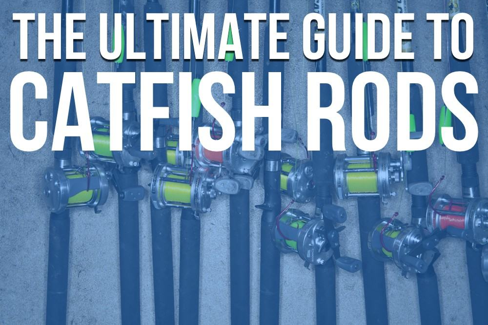 Catfish Rods The Ultimate Guide To Catfish Rods