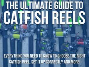 Catfish Reels: The Ultimate Guide To Catfish Reels