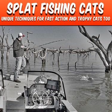 Splat Fishing Catfish Catfish Edge