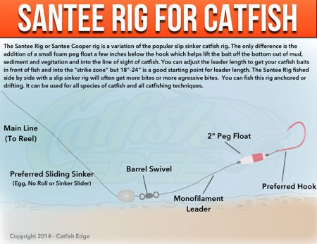 Santee Rig For Catfish