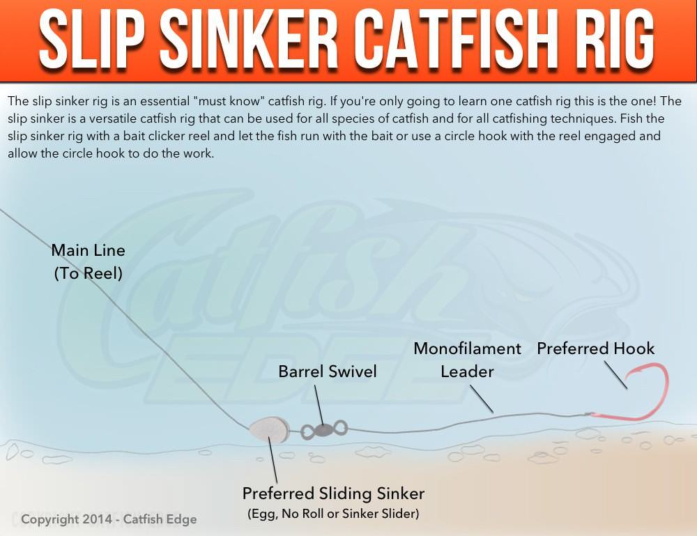Slip Sinker Rig: The One
