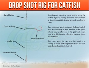Drop Shot Rig Catfish