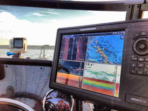 Fish Finder Catfish