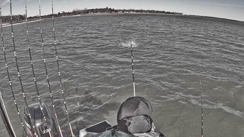 Whisker Seeker Tackle X3 Big bertha Water Explode Drift Fishing