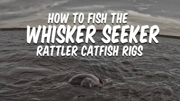 How To Fish Whisker Seeker Rattler Catfish Rigs