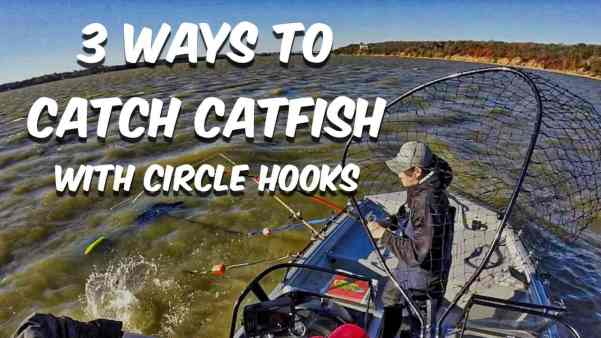 How To Catch Catfish With Circle Hooks