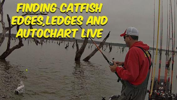 Finding Catfish AutoChart Live