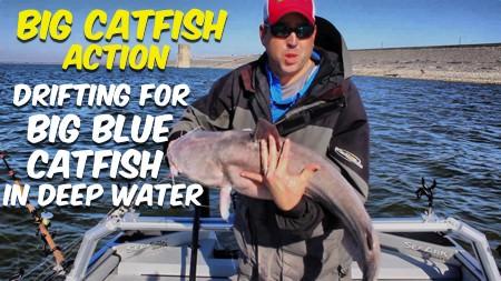 Big Catfish Action Drifting Deep Water 450