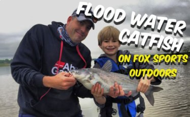 Flood Water Catfish