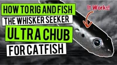 Ultra Chub: How To Rig and Fish The Whisker Seeker Ultra Chub