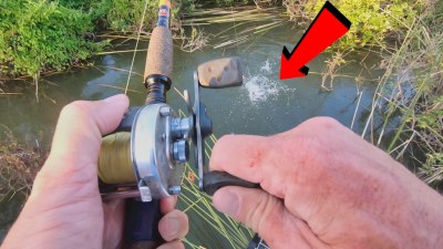 channel catfish catch clean cook