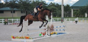 Florida horse attorney jumping