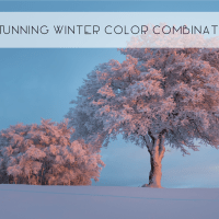 Stunning Winter Color Combinations