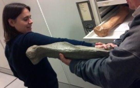 MuseumRachelToe