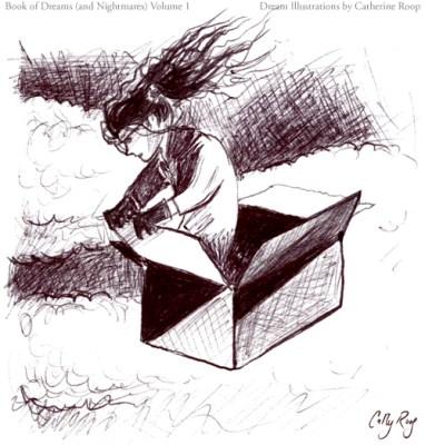Box Plane