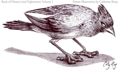 Evil Hawaiian Bird