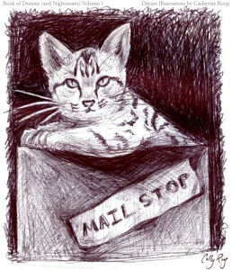 Mail Stop Kitten