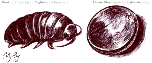 Pillbug and Penny