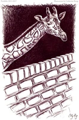 Giraffe and Wall