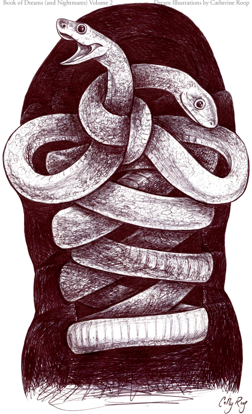 Snake Shoelaces