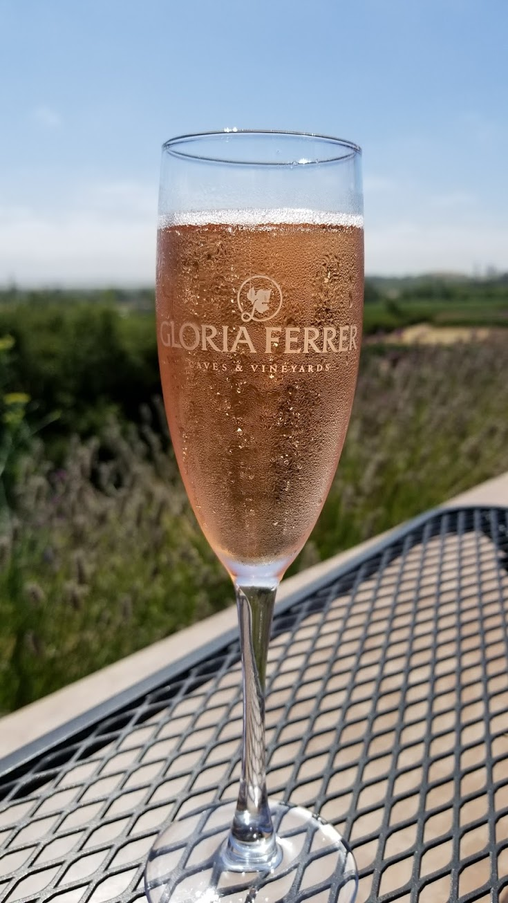 Gloria Ferrer Winery - #Sonoma #Winery #Vineyard