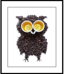 370_frameTea Leaf Owl with Lemon Tea Eyes_2017_