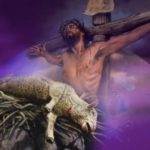 Blessed Lamb