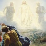 HOMILY FOR THE FEAST OF THE TRANSFIGURATION OF THE LORD (4).