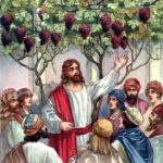 HOMILY FOR THE 27TH SUNDAY IN ORDINARY TIME YEAR A (4)