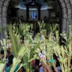 HOMILY/REFLECTIONS ON PALM SUNDAY OF THE LORD'S PASSION (9)
