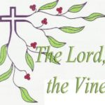HOMILY: 5TH SUNDAY OF EASTER YEAR B (6)