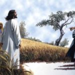 YEAR B: HOMILY FOR THE 14TH SUNDAY IN ORDINARY TIME (2)