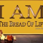YEAR B: HOMILY FOR THE 18TH SUNDAY IN ORDINARY TIME (2)