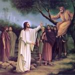 YEAR B: HOMILY FOR TUESDAY OF THE 33RD WEEK IN ORDINARY TIME (1)