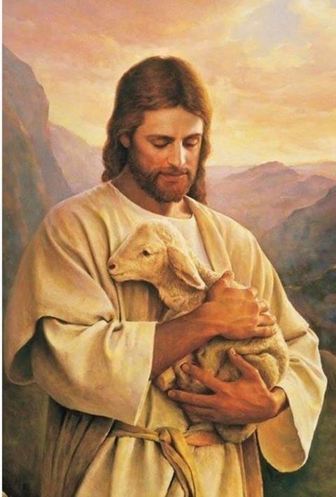 YEAR C: HOMILY/REFLECTION FOR THE GOOD SHEPHERD SUNDAY (7) - Catholic For Life