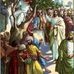 YEAR C: HOMILY FOR THE 31ST SUNDAY IN ORDINARY TIME (5)