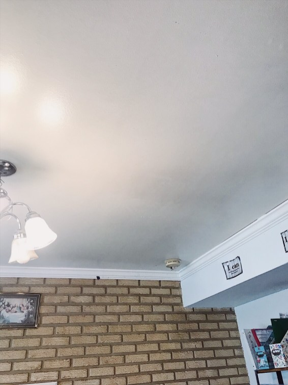 mop ceiling