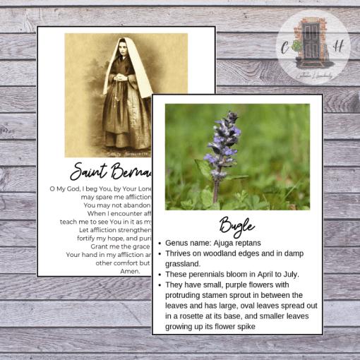 bugle flower and saint Bernadette