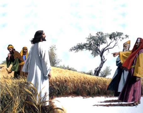lord-of-the-sabbath-5