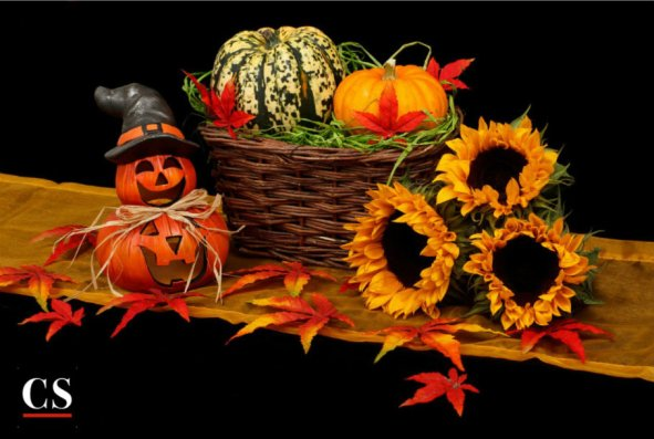 halloween, fall, autumn
