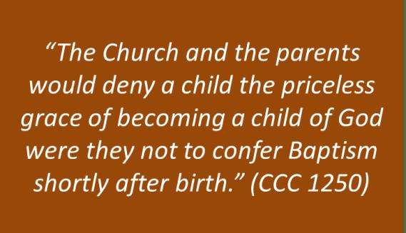 Joel and Lisa Schmidt - Infant Baptism