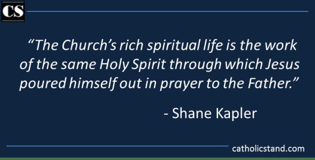Shane Kapler - Book