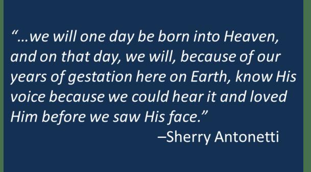 Sherry Antonetti - Gestation