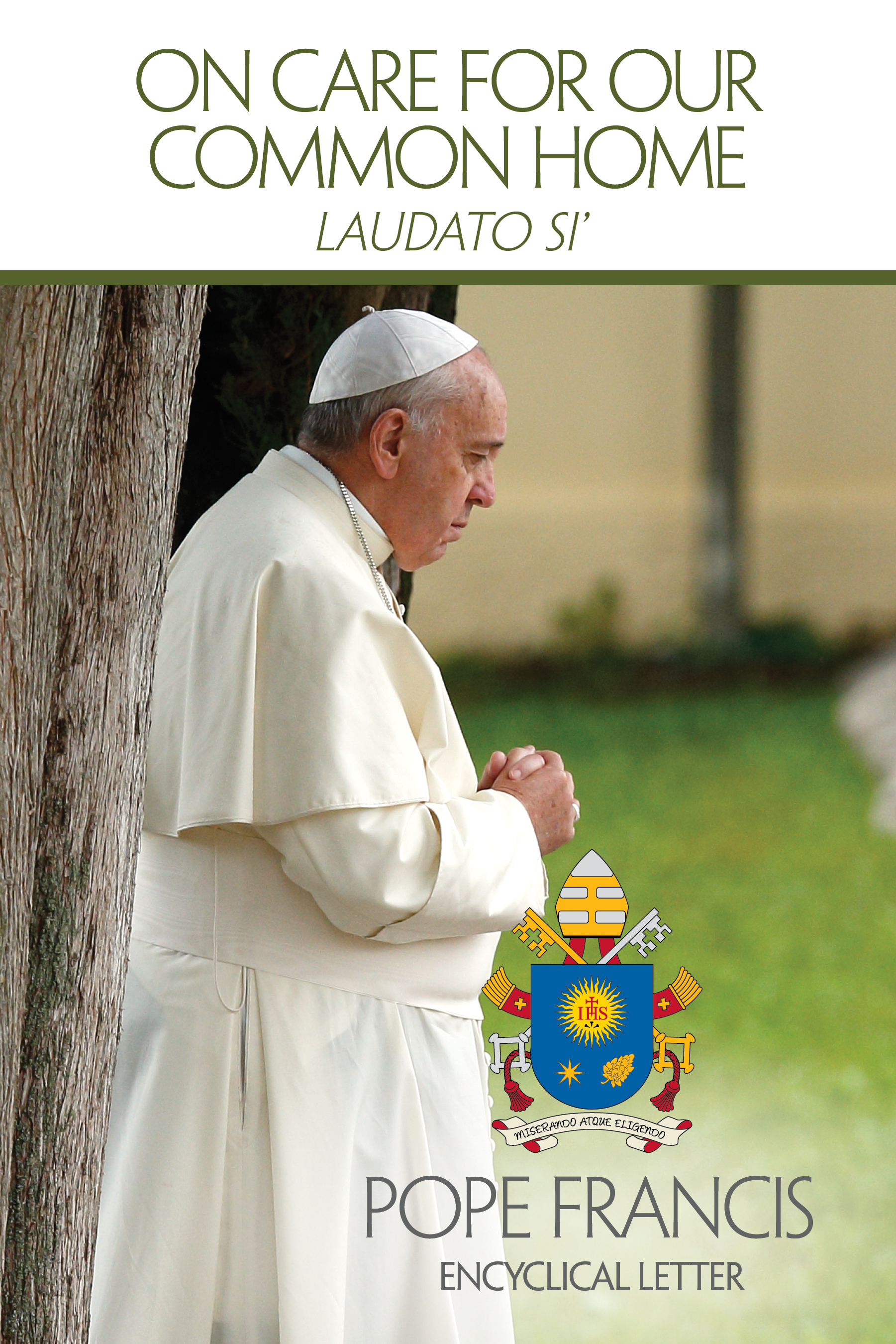 Image result for laudato si
