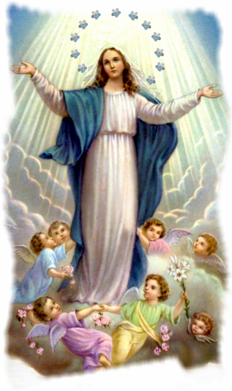 Immaculate Conception Mary Picture