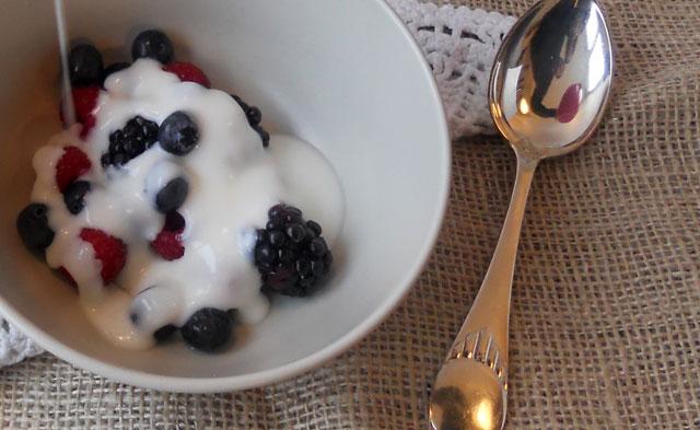 Yoghurt-1