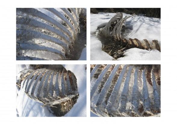 large_winter-quadrant-1