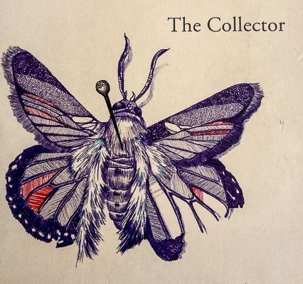 Butterfly image from the cover of The Collector by John Fowles