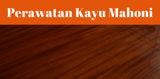 Perawatan Kayu Mahoni Agar Tidak Mudah Terserang Jamur