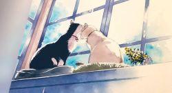 Le chat aux 7 vies T.1 (Glénat)